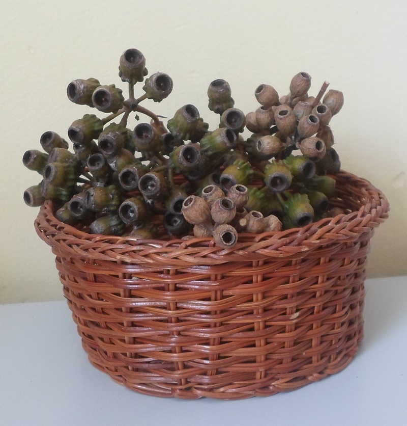 A small basket of gum nuts  - Free Decorating Using Natural Materials