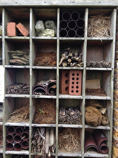 Garden insect boxes, Arlington devin insect box, DIY insect boxes, insect homes for garden