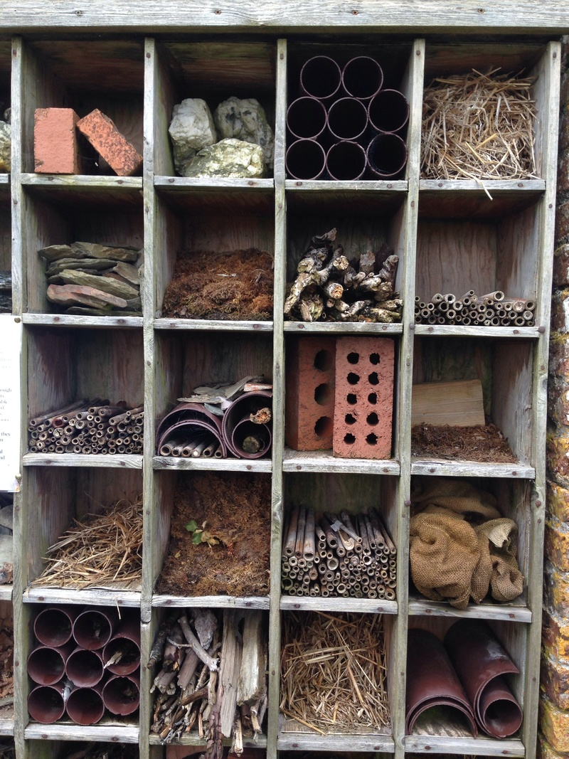 Garden insect boxes, Arlington devin insect box, DIY insect boxes, insect homes for garden  - Garden Insect Boxes