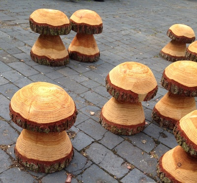 Carved toadstool, Tree trunk mushroom, tree trunk toadstool, toadstool stool