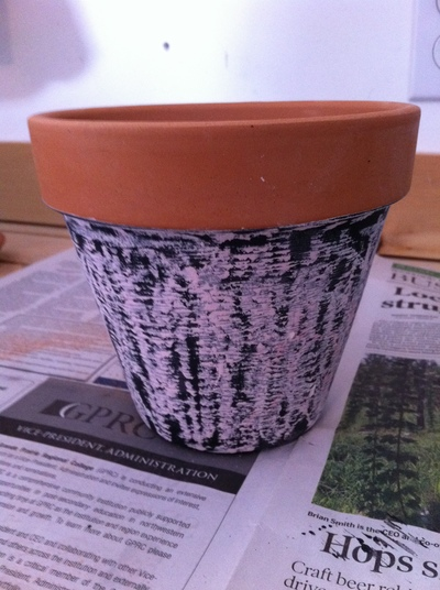Finished pot