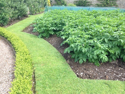 Shaped potato beds, unusual vegetable garden beds, stunning vegetable gardens, potato bed