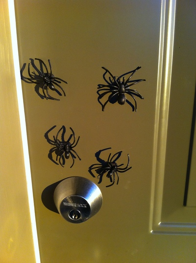 Spiders at front door
